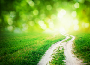 Bigstock-Lane-in-meadow-and-deep-blue-s-38652739-300x215