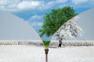 Bigstock-Zipper-Changing-Seasons-61958576
